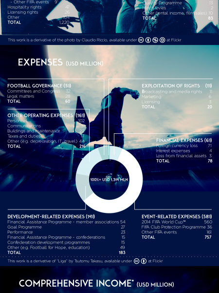 FIFA Financial Report 2013 Infographic