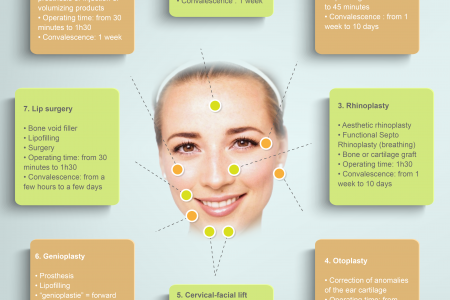Face Surgery Infographic Infographic