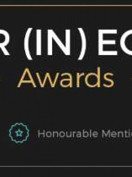 Gender (In)Equality Awards Infographic