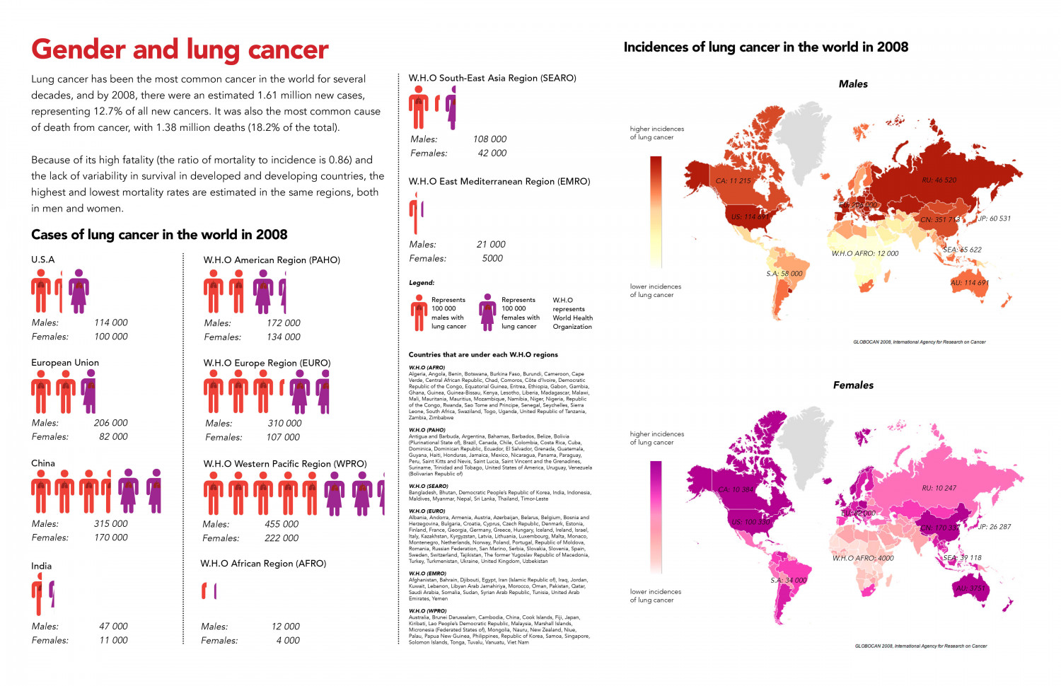 Gender and Lung Cancer Infographic
