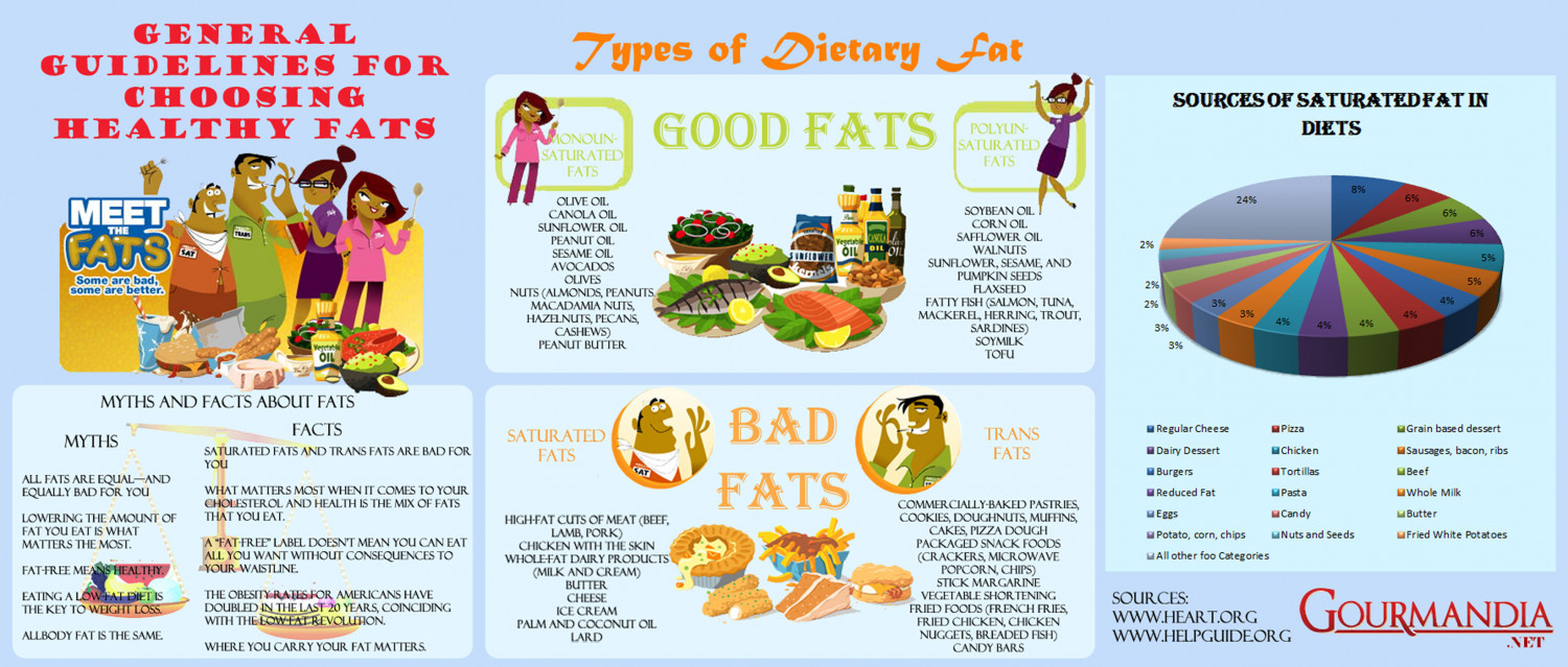 General Guidelines for Choosing healthy fats Infographic