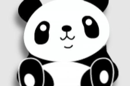 Giant Panda Facts Infographic