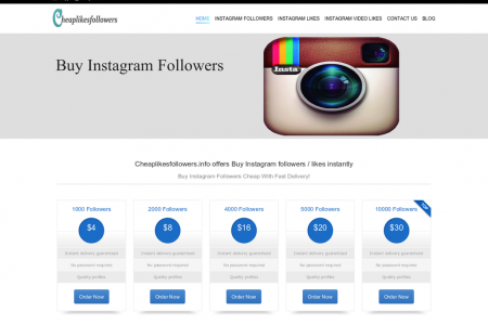 Grow Your Instagram Audience Quickly Infographic