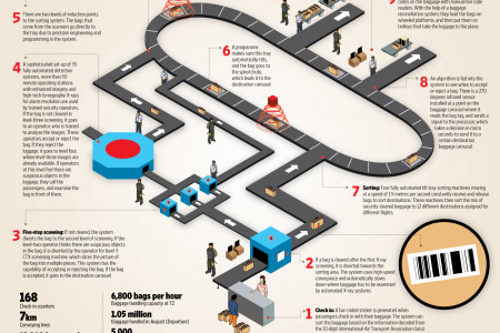 HOW THE BAGGAGE HANDLING SYSTEM WORKS Infographic
