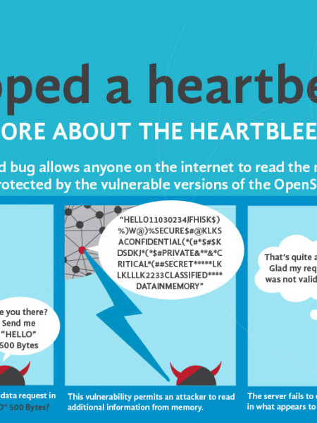 Heartbleed Bug Infographic