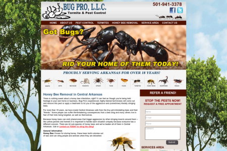 Honey Bee Removal in Central Arkansas Infographic