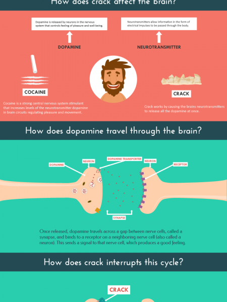 How Does Crack Cocaine Affect the Brain? Infographic