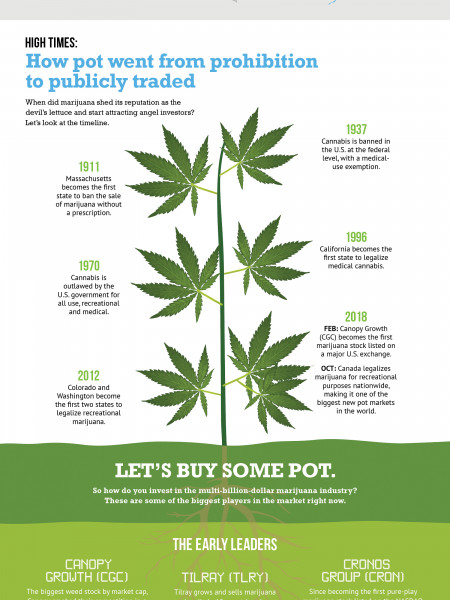 How to Buy Pot Stocks Infographic