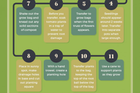 How to be a compact gardener Infographic