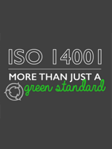 ISO 14001: More Than Just a Green Standard Infographic