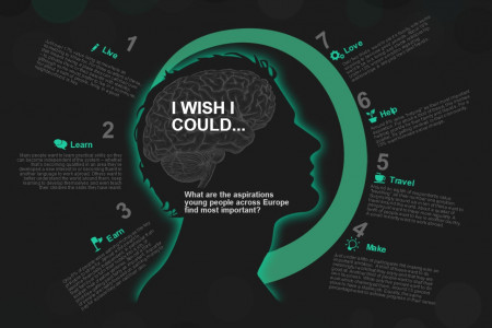 In 2014, I wish I could... Infographic