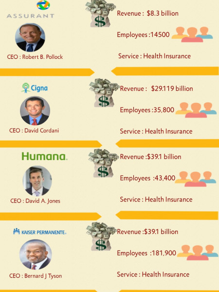 Top Insurance Companies In the U.S. Infographic