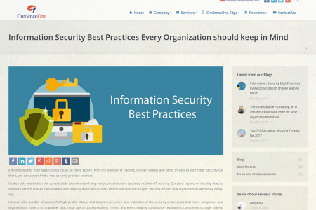 Information Security Best Practices Every Organization should keep in Mind Infographic