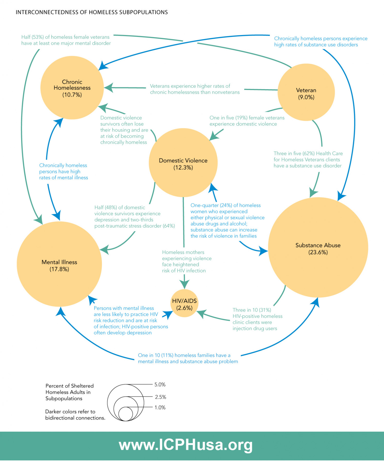 Interconnectedness of Homeless Subpopulations Infographic