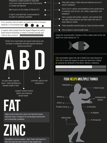 Meat Vs. Fish Infographic