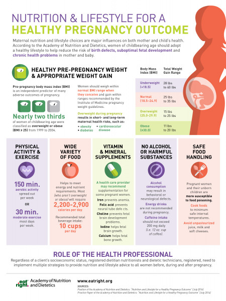 Nutrition & Lifestyle For A Healthy Pregnancy Outcome Infographic