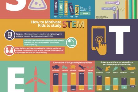 Primary STEM education in the Muslim World Infographic