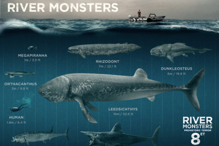 River Monsters - Infographic Infographic
