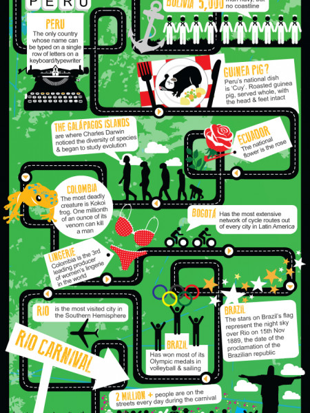Road To Rio Carnival Infographic