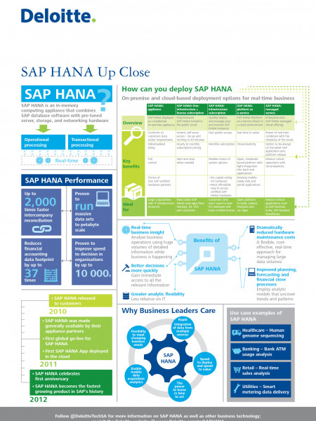 SAP HANA Up Close Infographic