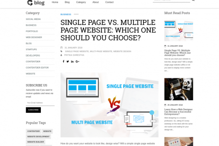 Single Page VS Multiple Page Website Which one should you choose Infographic