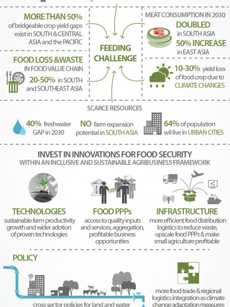 Sowing the Seeds of Food Security Infographic