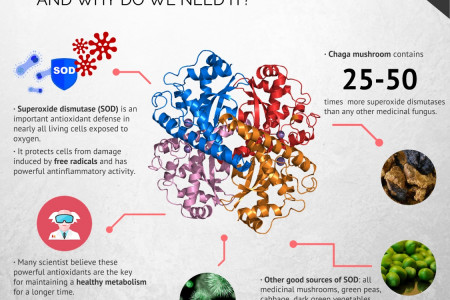 Superoxide dismutase, one of nature's most powerful antioxidants Infographic