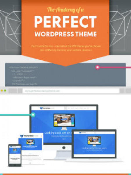 The Anatomy of a Perfect WordPress Theme Infographic
