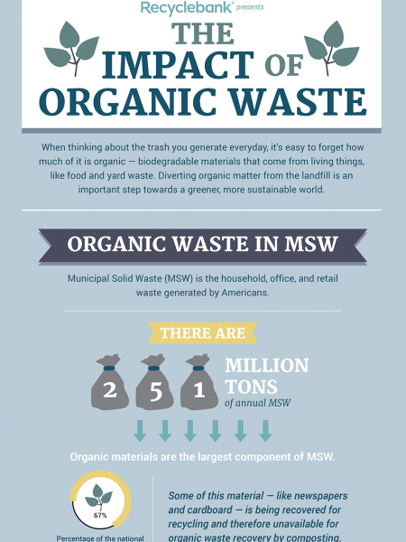 The Impact Of Organic Waste Infographic