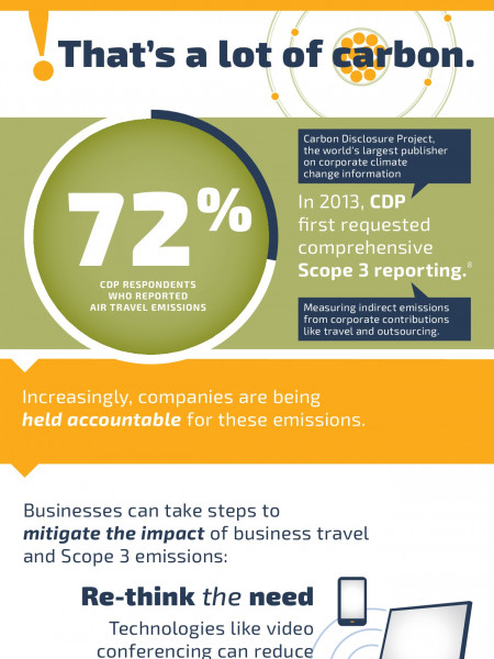 The Impact of Air Travel Infographic