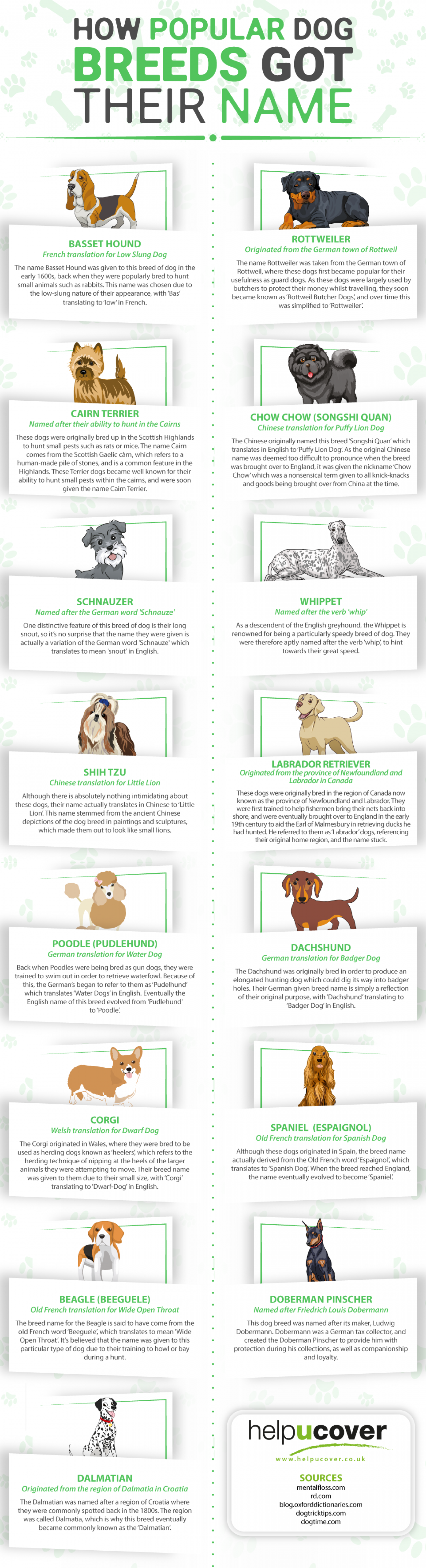 Visual Top Ten Dog Names | Book Marketing