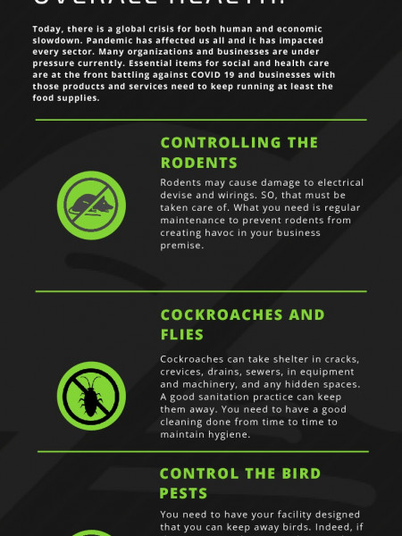 The Tips Of The Pest Control Services During The Lock Down Infographic