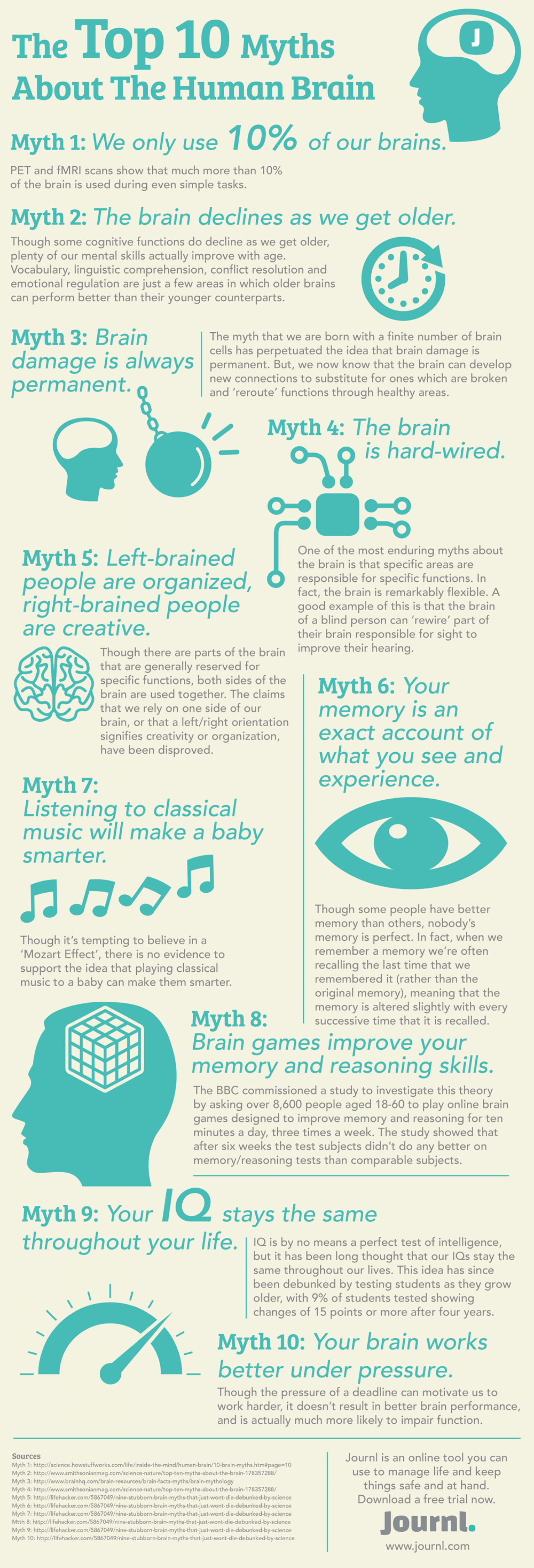 The Top 10 Myths About The Human Brain Infographic
