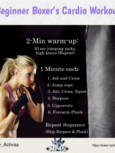 The Ultimate Boxing Workout Program for Beginner Infographic