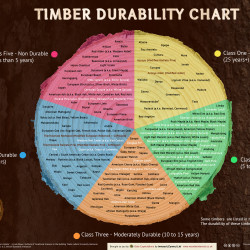 Timber Durability Chart Visual Ly