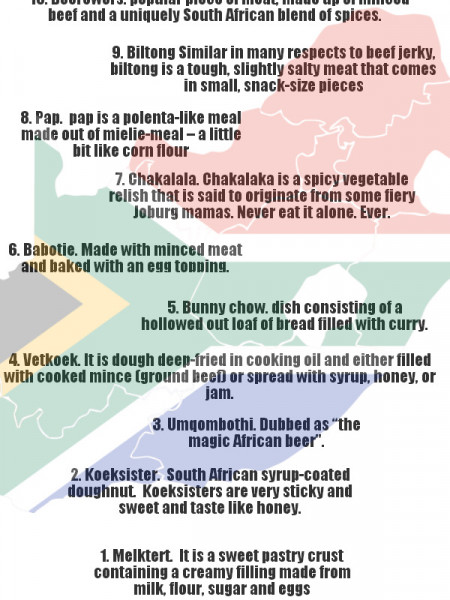 Top 10 South African Foods Infographic