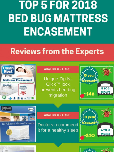 [Top 5 for 2018] Best Bed Bug Mattress Encasement Reviews from the Experts Infographic