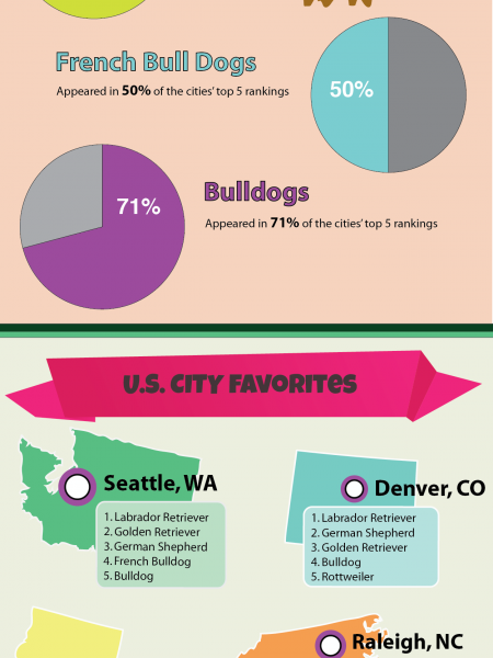 Top Dog Breeds in the USA Infographic Infographic