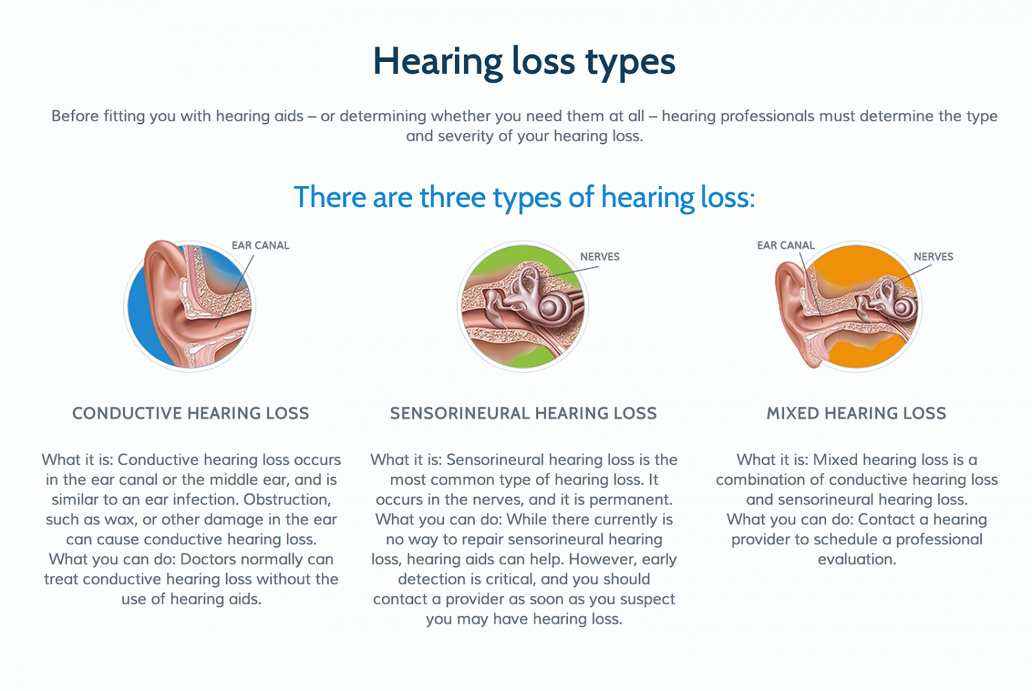 Types of Hearing Loss Infographic