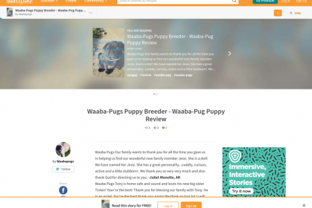Waaba-Pugs Puppy Breeder - Waaba-Pug Puppy Review Infographic