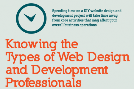 Web Design and Development - DIY or Outsource? Infographic