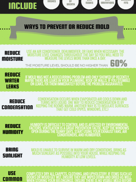 What You Need to Know about Mold when Buying or Selling a House Infographic