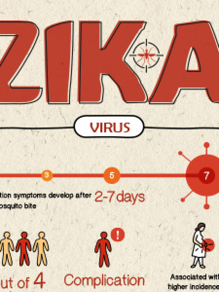 What is Zika Virus? [Infographic] Infographic