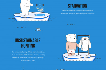 What's Threatening The Polar Bears Infographic
