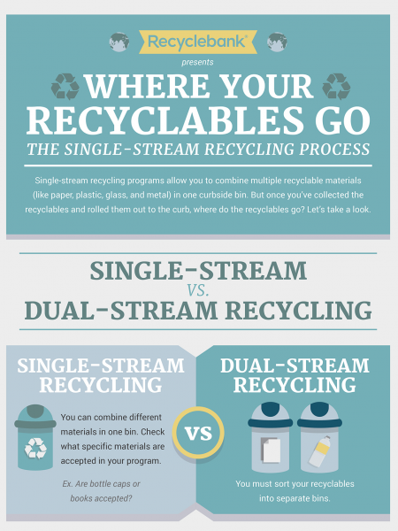 Where Your Recyclables Go - The Single-Stream Recycling Process Infographic