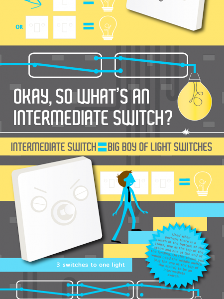Which Switch is What Switch? Infographic