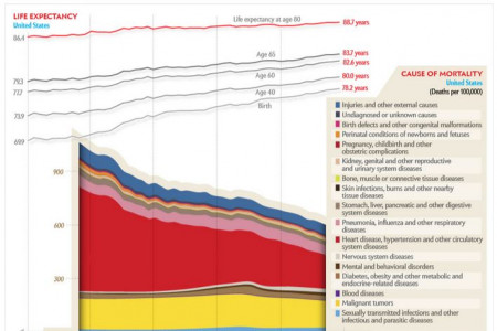 Why we die Infographic