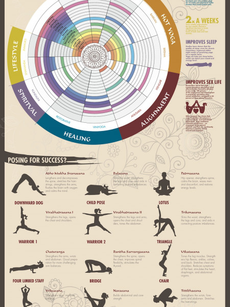 Yoga for Starters - Namaste Infographic