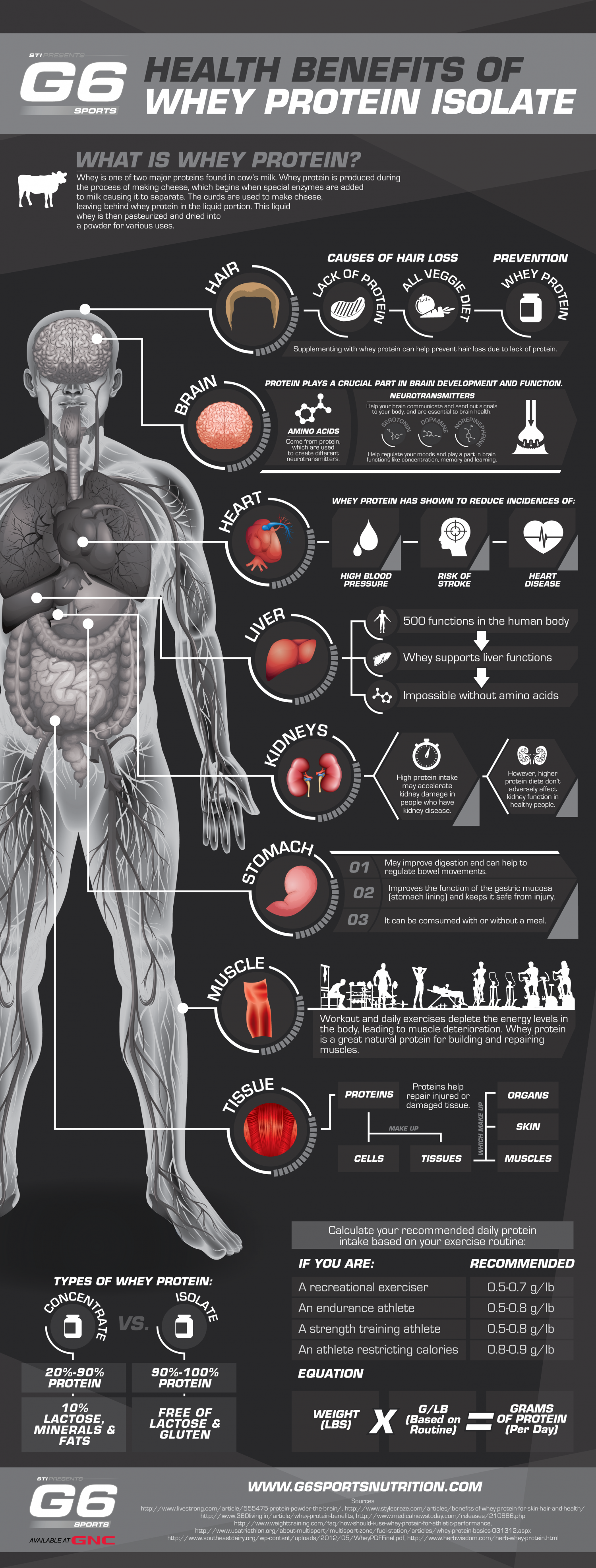 Health Benefits of Whey Protein Isolate Infographic