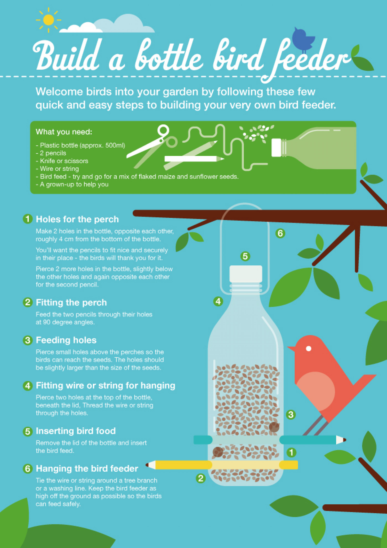 Build a bottle bird feeder Infographic